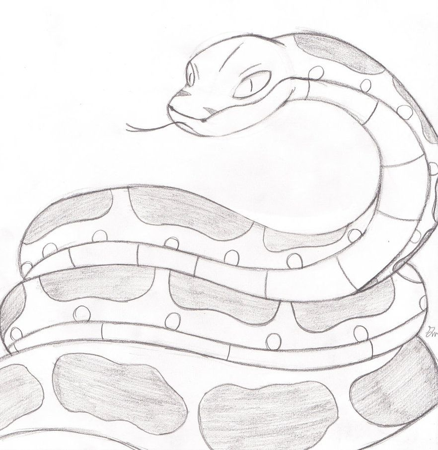 Anaconda Sketch By Lol20 Deviantart Com On Deviantart Snake Drawing Anaconda Snake Drawings
