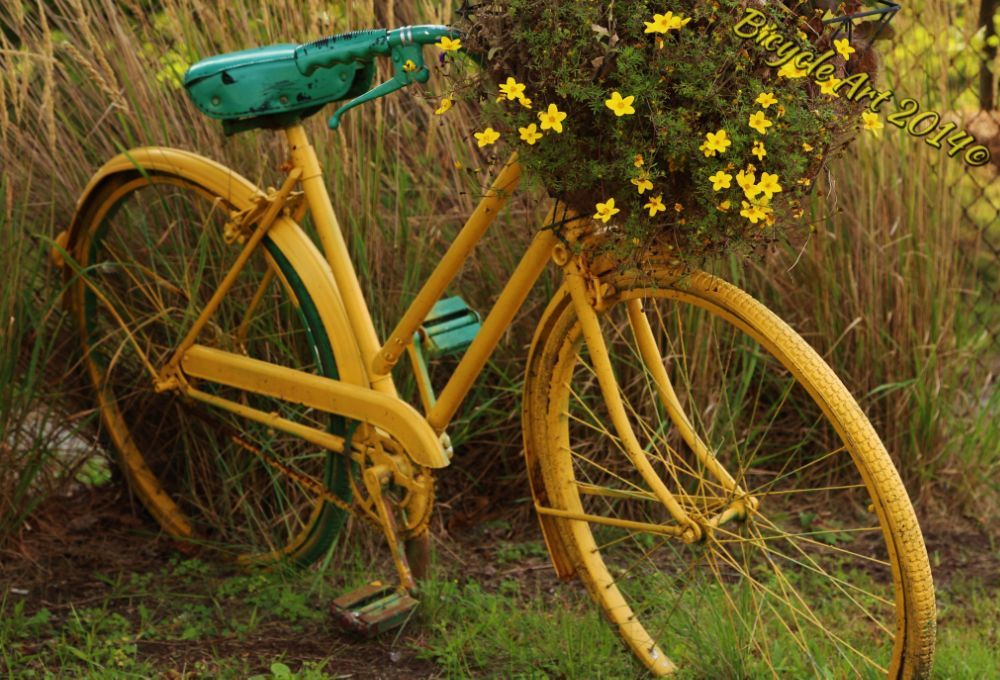 Bicycle Art II by Roland Lavigne
