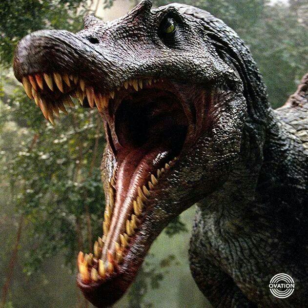 Jurassic Park III. Spinosaurus egypticus or Macy's