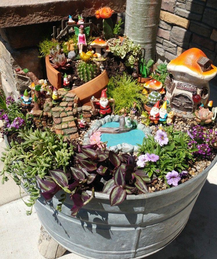 Fairy Garden Fairy Garden Ideas Miniature Garden Terracotta Gnomes Succulents Miniature Garden Fairy Garden Cactus Arrangement