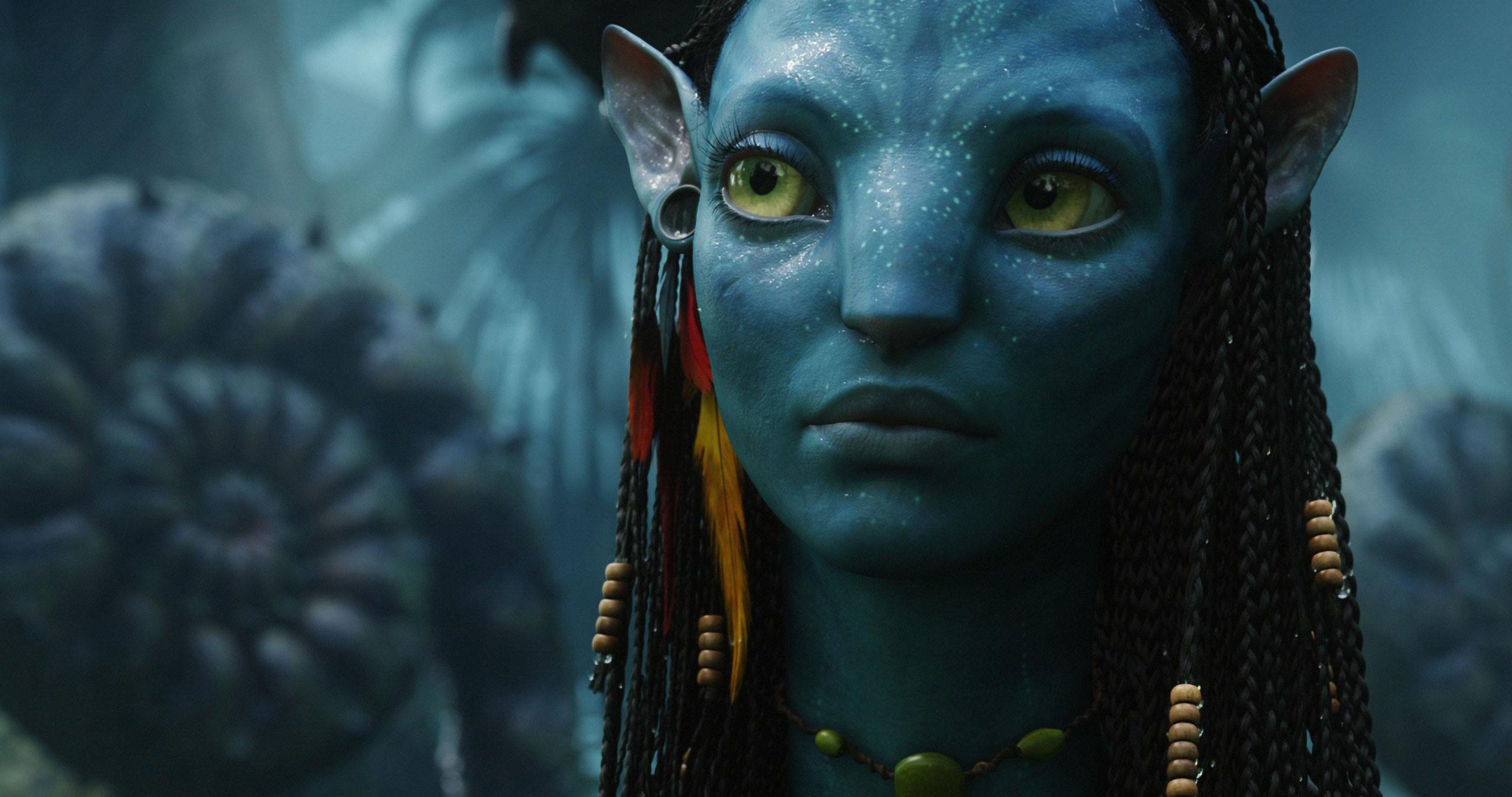 Avatar Movie Neytiri 4k Ultra Hd Wallpaper Avatar Movie Zoe Saldana Avatar Avatar