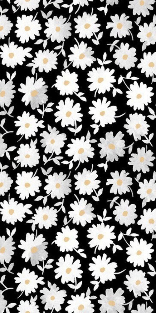 print, pattern, modern floral, monochrome, design, daisy