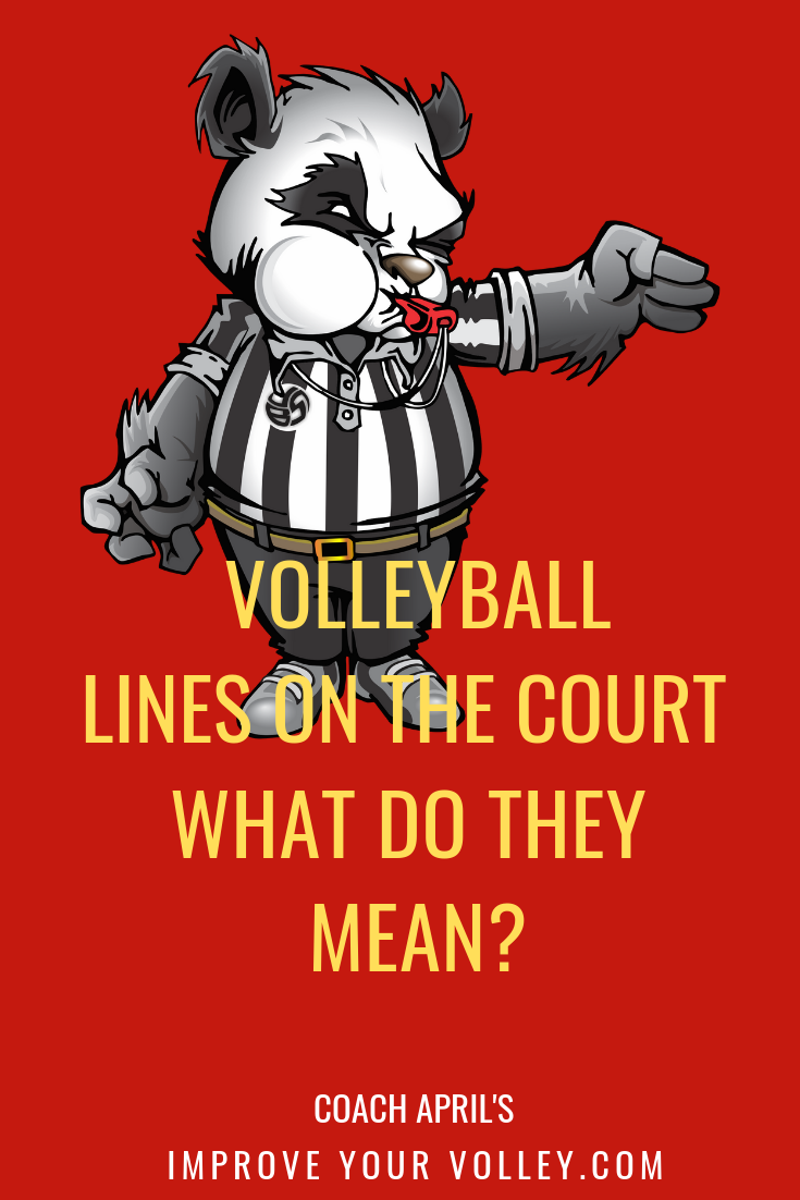 Volleyball Lines Sidelines Endlines Service Line 10 Ft Line Sub Lines Volleyball Rules Volleyball Court Size Volleyball Net Height