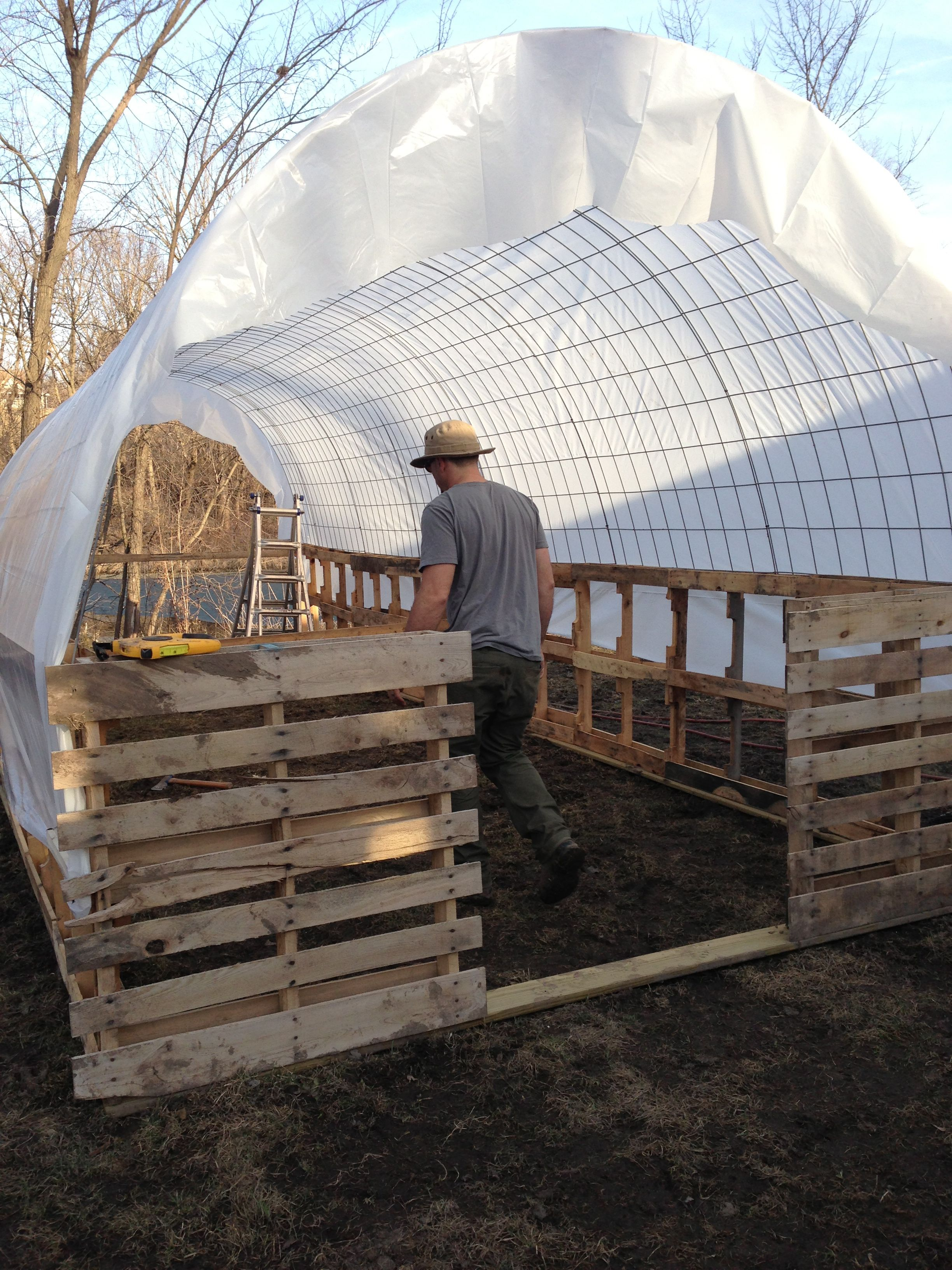 tall cow panel hoop house - Google Search | Homesteading ...