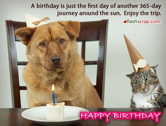 Funny Birthday Orkut Scraps And Facebook Wall Greetings – Humorous Birthday Greeting