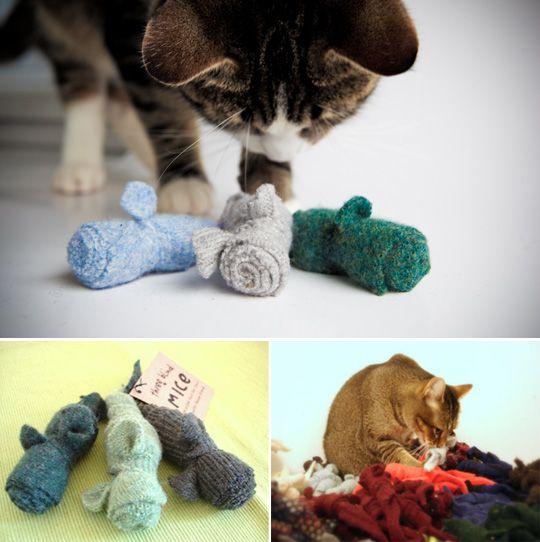 Homemade Kitty Toys I Can Do That Diy Cat Toys