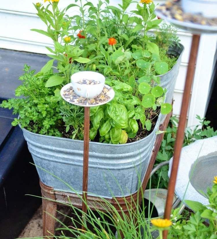 Zinkwanne mit kräutern bepflanzen