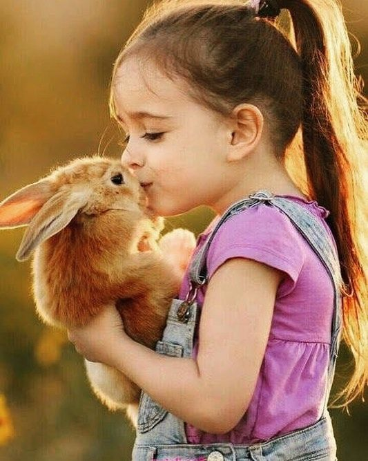 Girl Kissing A Rabbit Girl Rabbit Animal Animals Kids Kiss