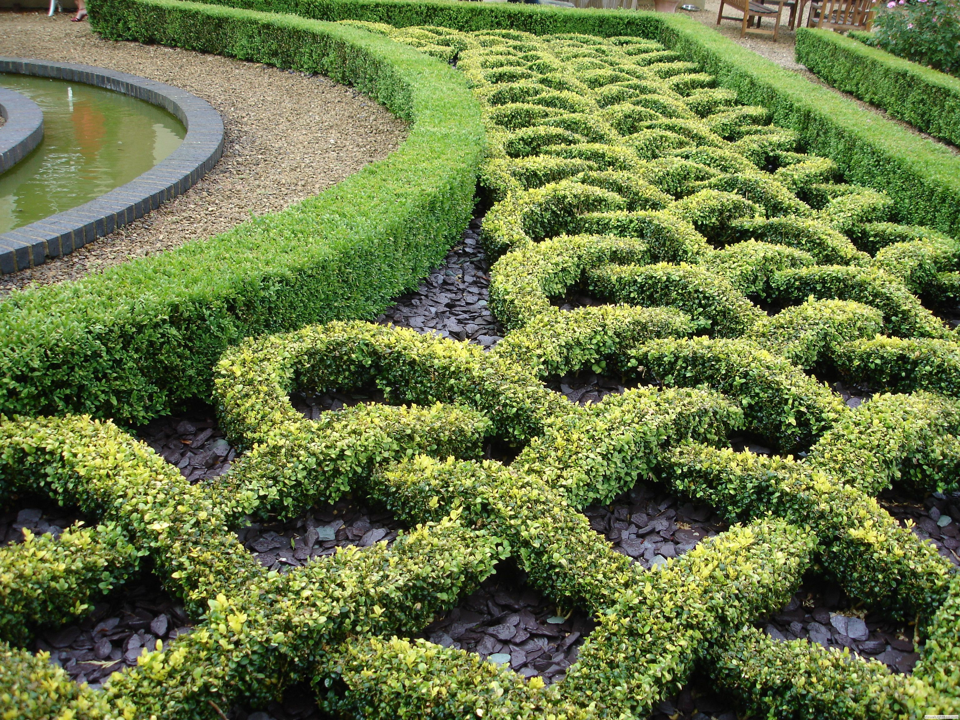 Fancy hedges at highnam court gardens gloucester http for Garden design ideas with hedges