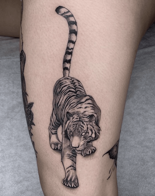 Tiger Tattoo Ideas You Need To Inspire You