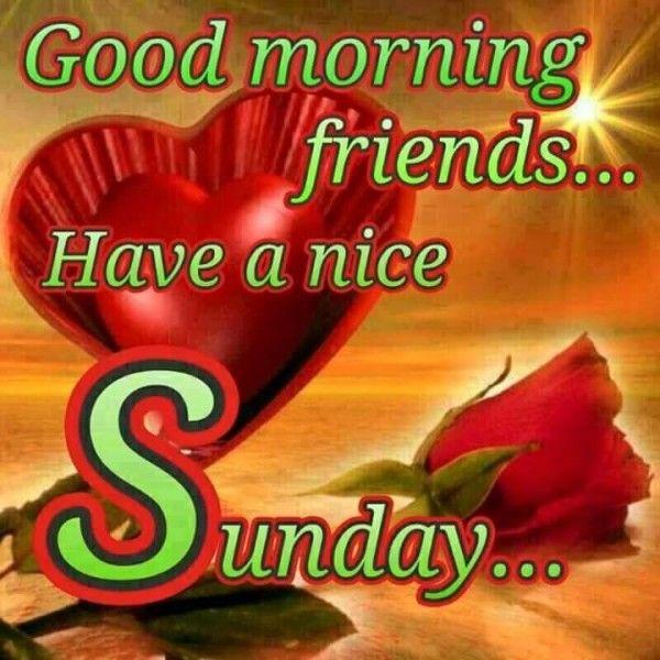 Happy Sunday Have Nice Day