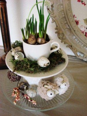 Etag re van glazen taartschaal kop en schotel en schaaltje voorjaarsbloemetje erin en mos - Decoratie schotel ...