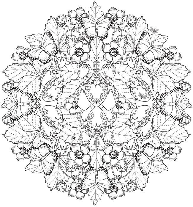 Creative Haven Wondrous Nature Mandalas: A Coloring Book ...