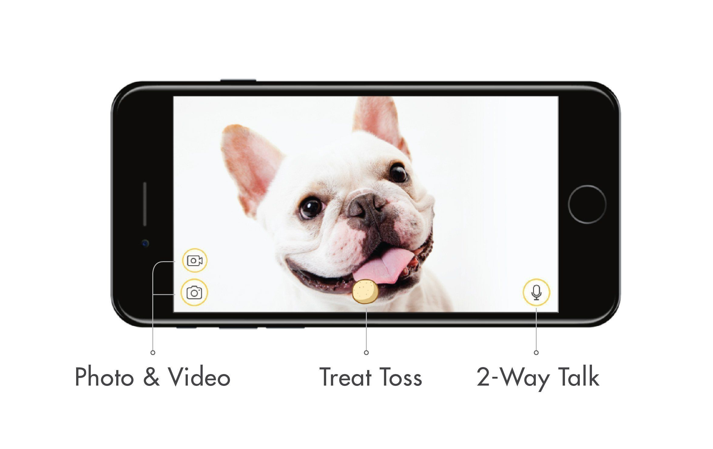 Furbo Dog Camera Treat Tossing Full Hd Wifi Pet Camera And 2way Audio Designed For Dogs Works With Amazon Alexa As Seen On Ellen Pet Camera Dog Words Dogs
