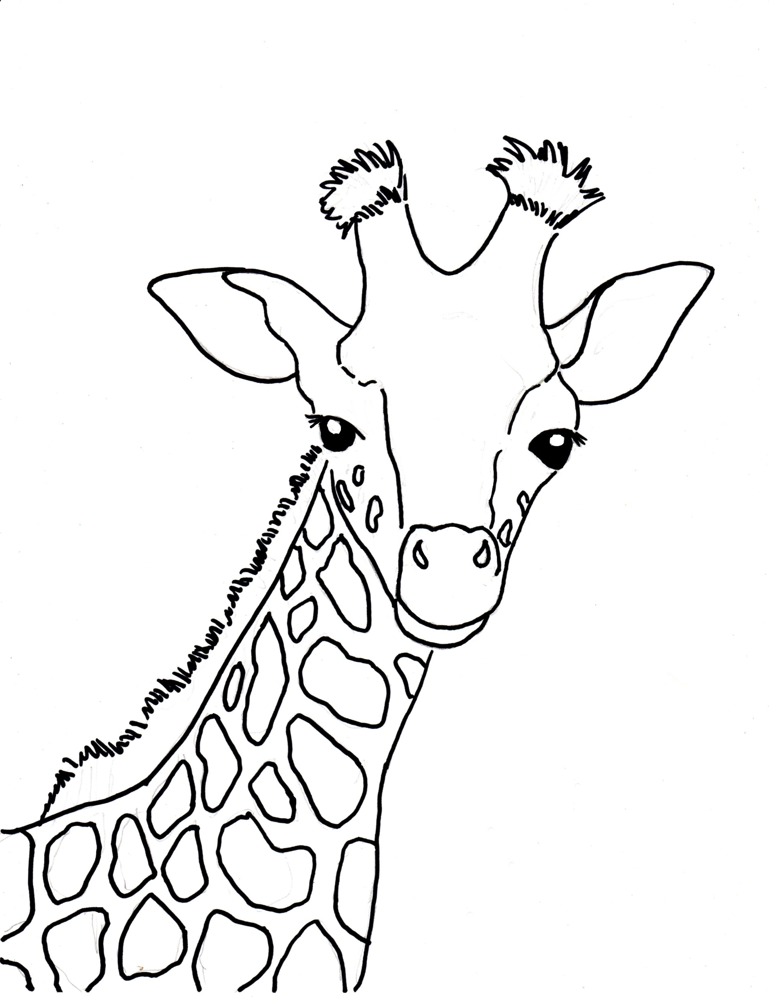 Baby Giraffe Coloring Page Samantha Bell Search Results Fun