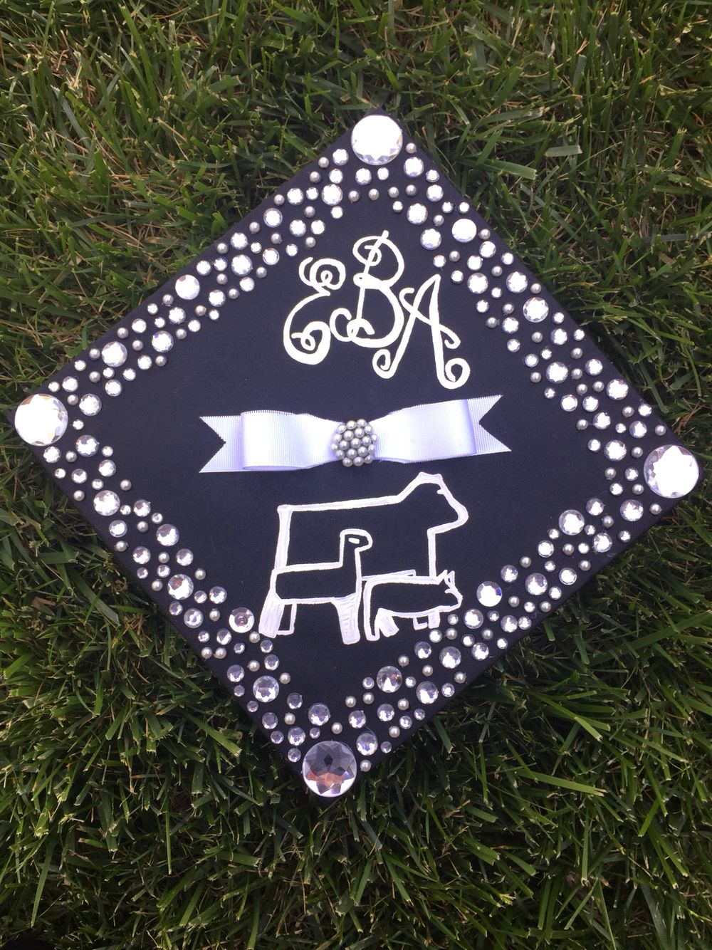 Decorating graduation cap ideas for teachers - Animal Science Graduation Cap Pearls And Rhinestones