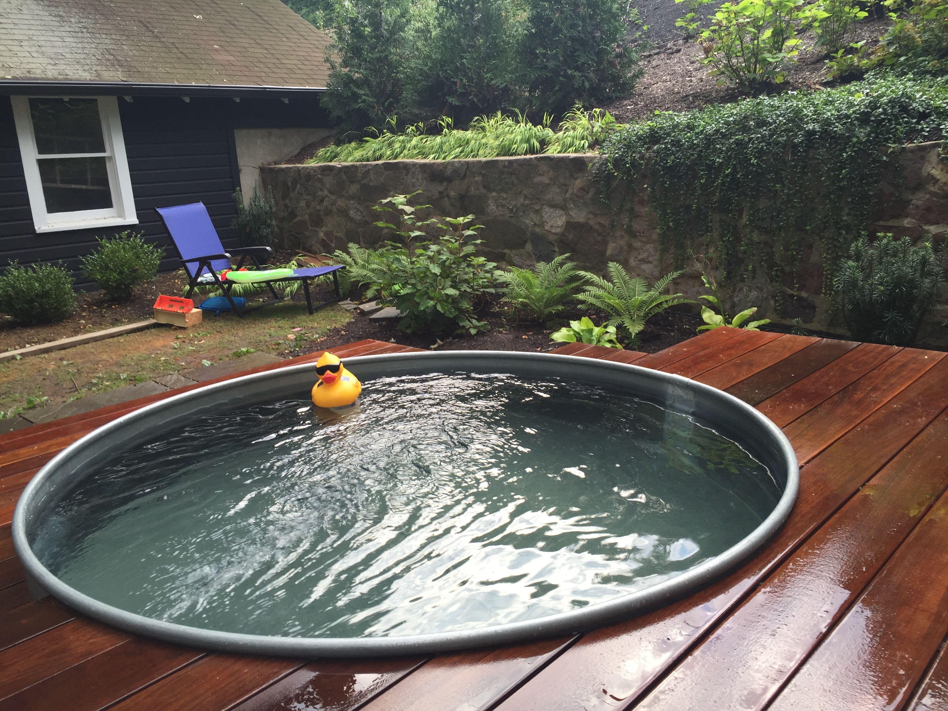 Horse Trough Pool Complete Horse Trough Backyard Backyard Sheds