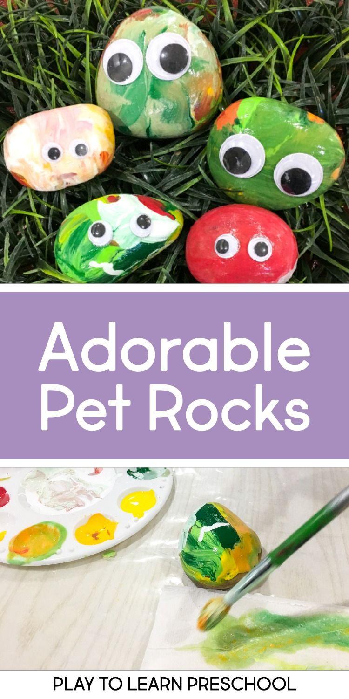 Pet Rock Process Art Project