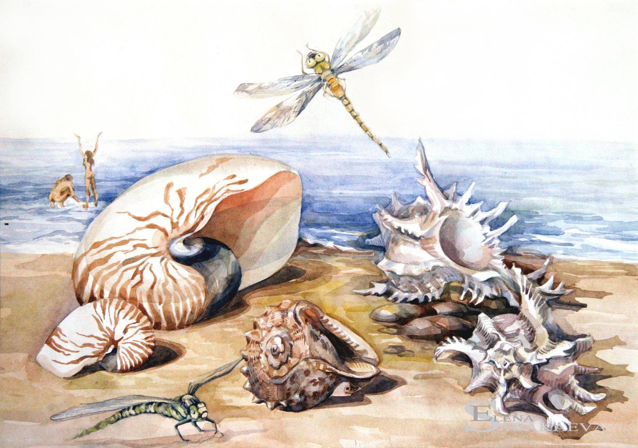Картинки для декупажа морские животные тебе