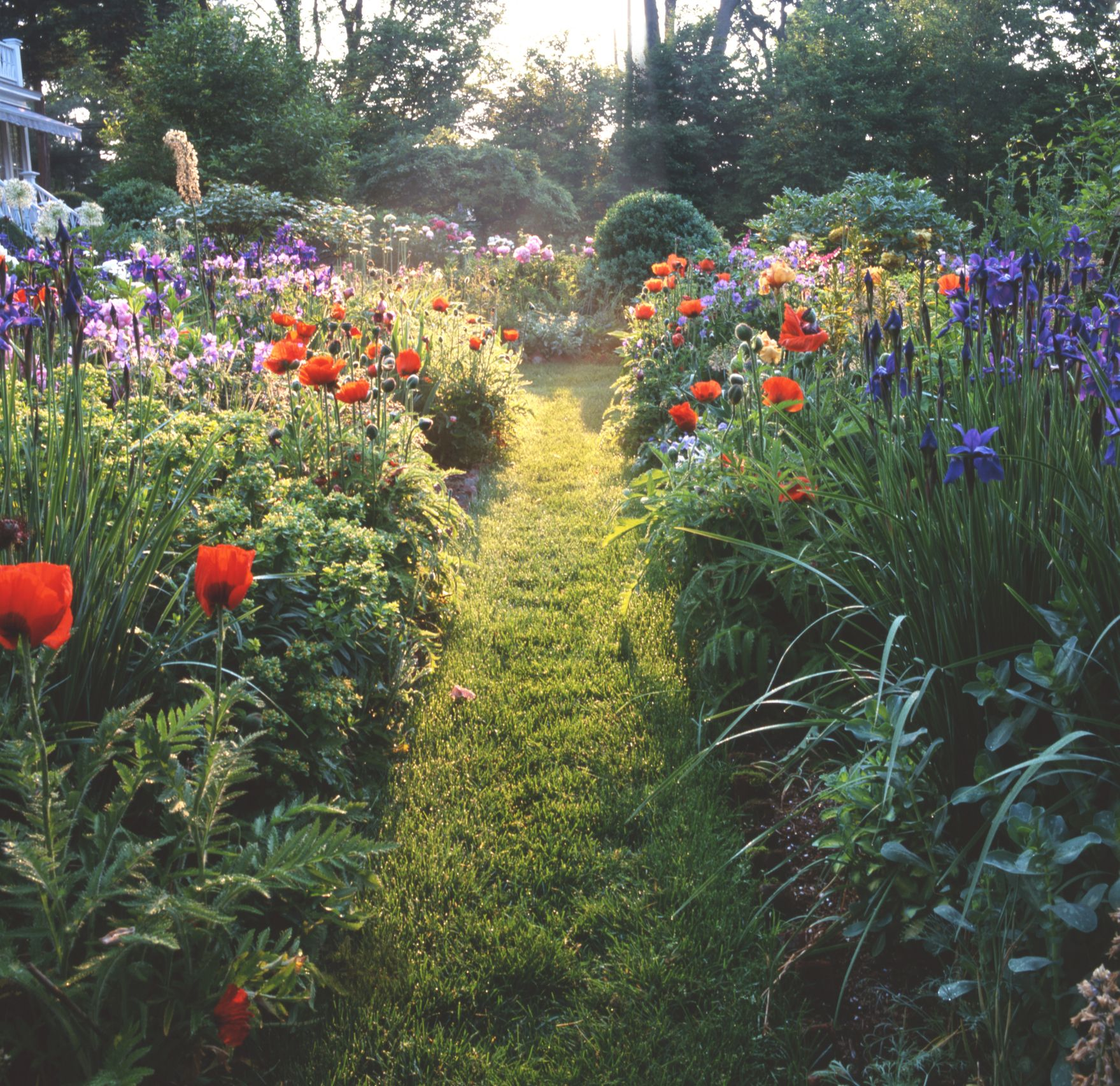 13 Mistakes That Drive Professional Landscapers Crazy 400 x 300