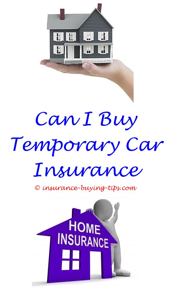Homeowners Insurance Quotes Texas Pleasing Aa Car Insurance Quotes South Africa  Buy Health Insurance Rental