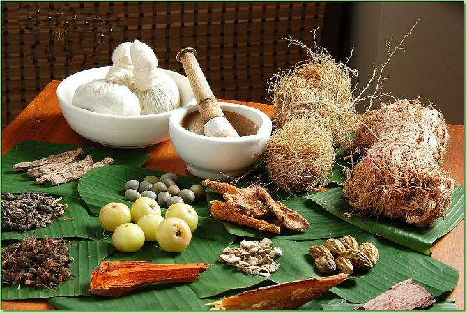 Ayurveda, one of the oldest school of medicines was invented