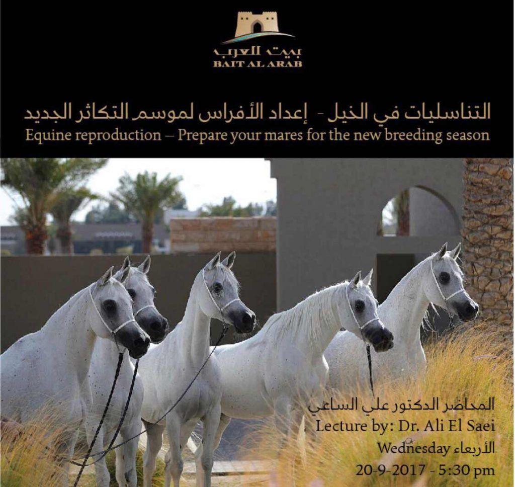 بيت العرب يقيم محاضرة بعنوان التناسليات في الخيل إعداد الفرس لموسم التكاثر الجديد Beautiful Horses Horse Love Horses