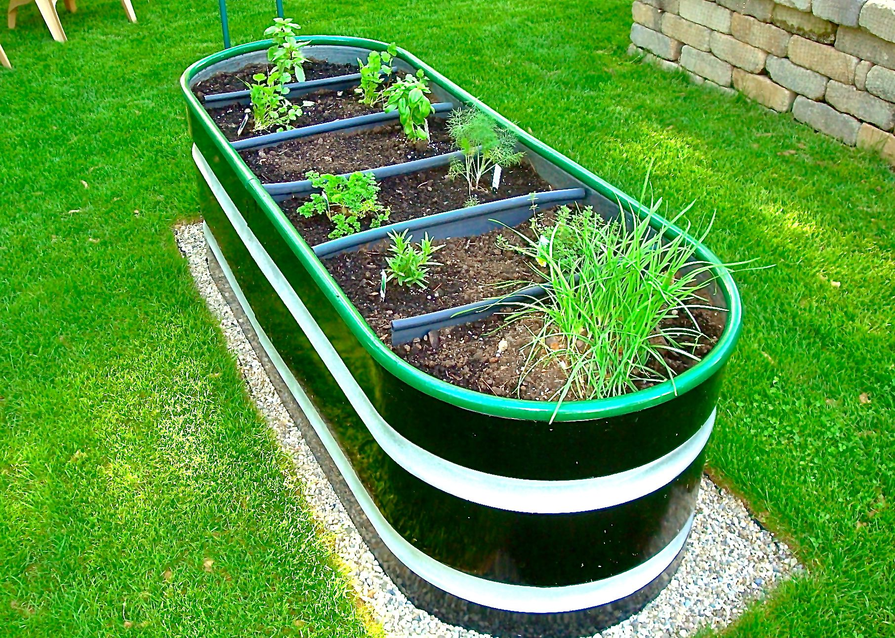 Horse Trough Herb Garden In Early Spring