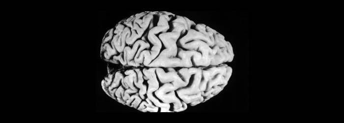 Todos tenemos las proteínas para desarrollar alzhéimer