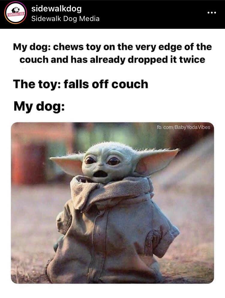 Baby Yoda Meme In 2020 Yoda Meme Funny Relatable Memes Star Wars Memes
