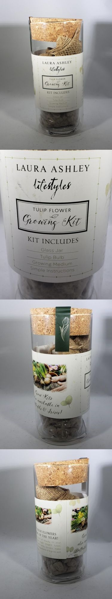 Other Plants Seeds And Bulbs 181052 Laura Ashley Lifestyles Tulip Flower Growing Kit In Glass Jar Buy It Now Only Jars For Sale Glass Jars Tulips Flowers