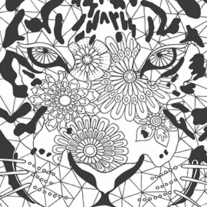 Image Result For Patterns Of The Universe Coloring Book Colouring