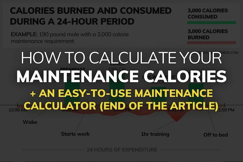 What Are Your Maintenance Calories Maintenance Calorie Calculator With Images Calorie Calculator Calorie Maintenance