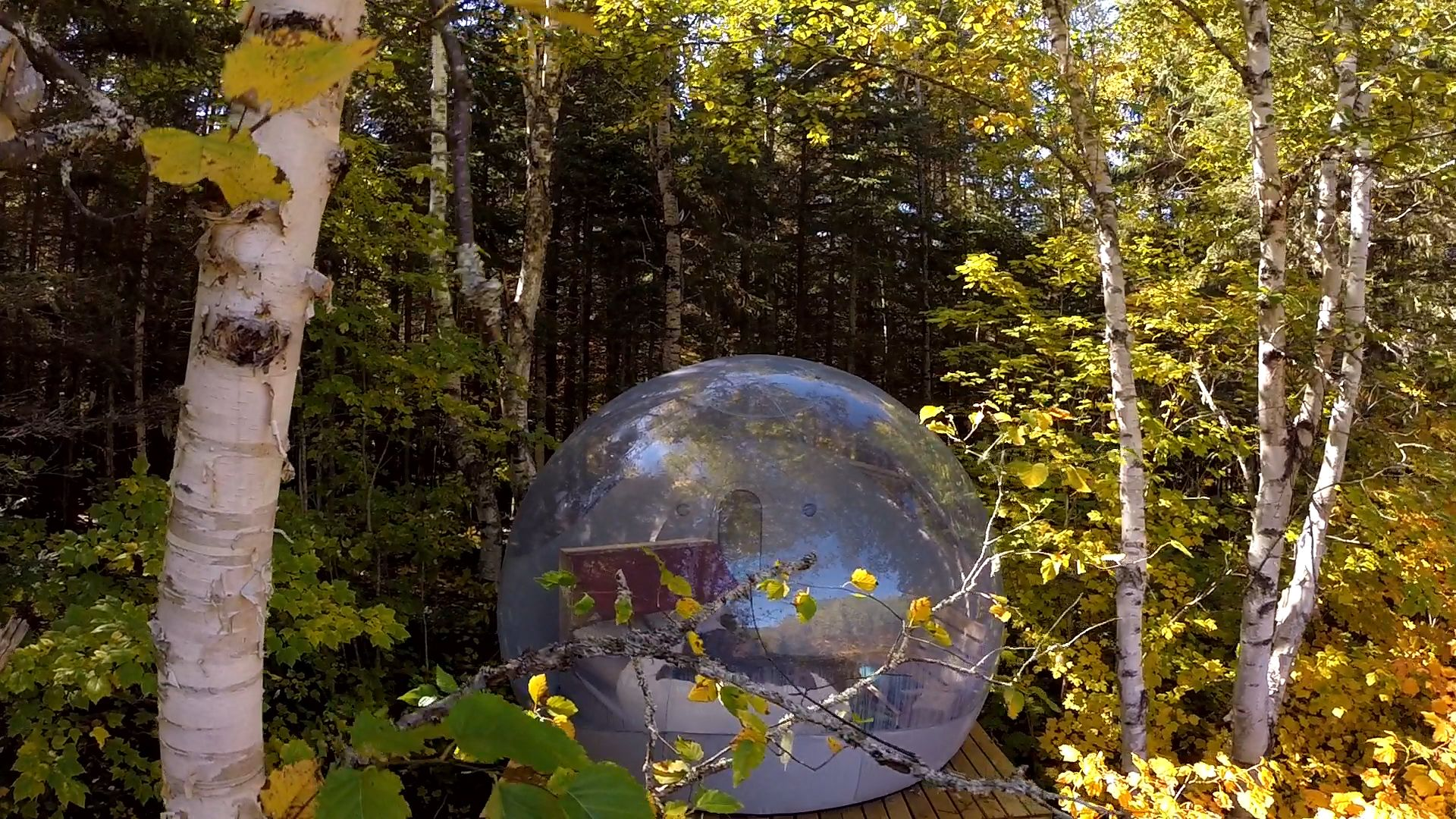 Sleep With The Stars In A Bubble