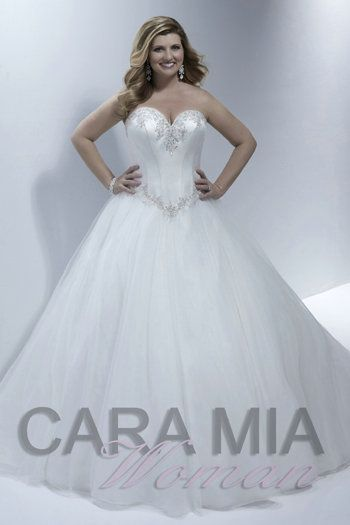Princess Wedding Dresses Ball Gown Plus Size Bridal Dresses ...