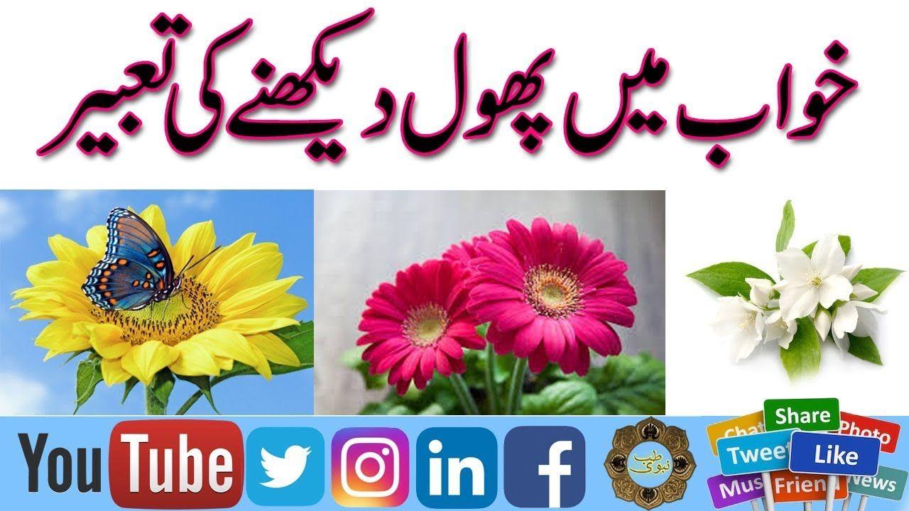 Khwab main flower dakhne ki tabeer in urdu phool ko khwab main khwab main flower dakhne ki tabeer in urdu phool ko khwab main dekhne izmirmasajfo