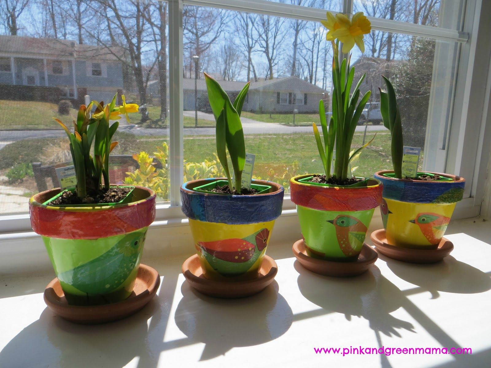 Pink And Green Mama: Spring Windowsill Garden For Children With DIY Flower  Pots Using Mod