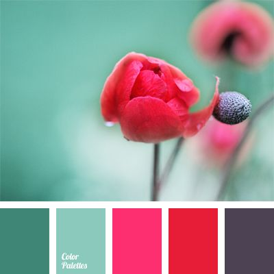 Red Color Palettes
