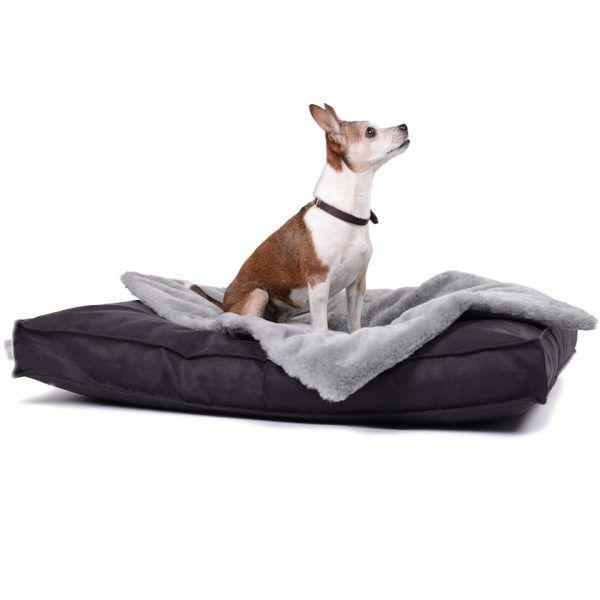 Einfach Perfekt Ein Hundekissen Das Keine Wunsche Offen Lasst Dogstyle Classic Ist Robust Formschon Und Bequem Hunde Bett Orthopadisches Hundebett Hunde
