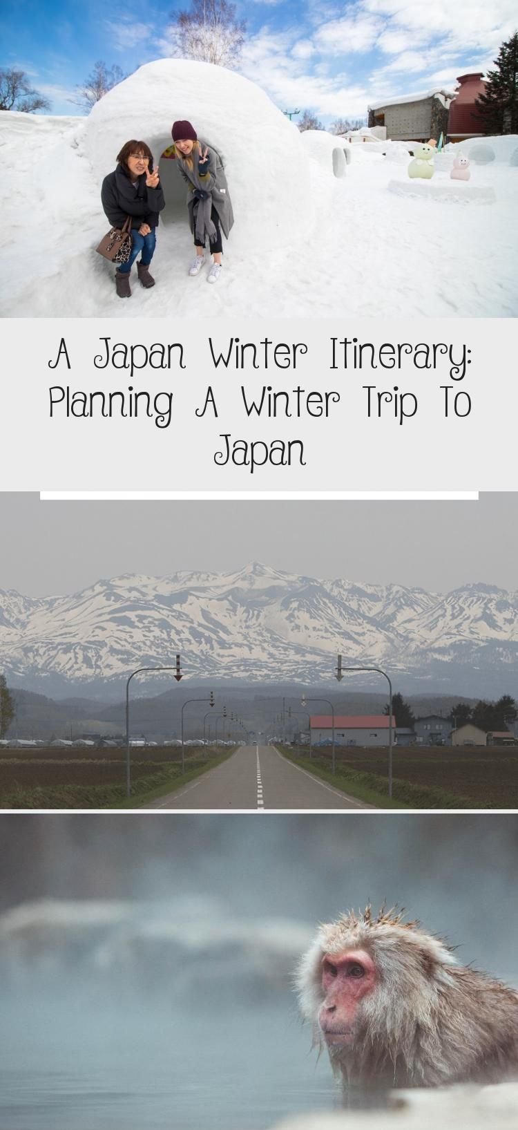 Everything you need to know about visiting Japan in winter. Japan winter travel will take you to some of the most magical places in Japan. From Tokyo to Hokkaido and beyond, here are the best places to visit in Japan during winter. #japan #wintertravel #japantravel #hokkaido #travelingwinterPhotography #travelingwinterSnow #travelingwinterRoadTrips #travelingwinterClothes #travelingwinterEurope
