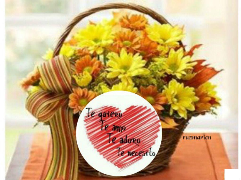 Pin De Marien Ruz En Lindas Flores Para Ti Flores