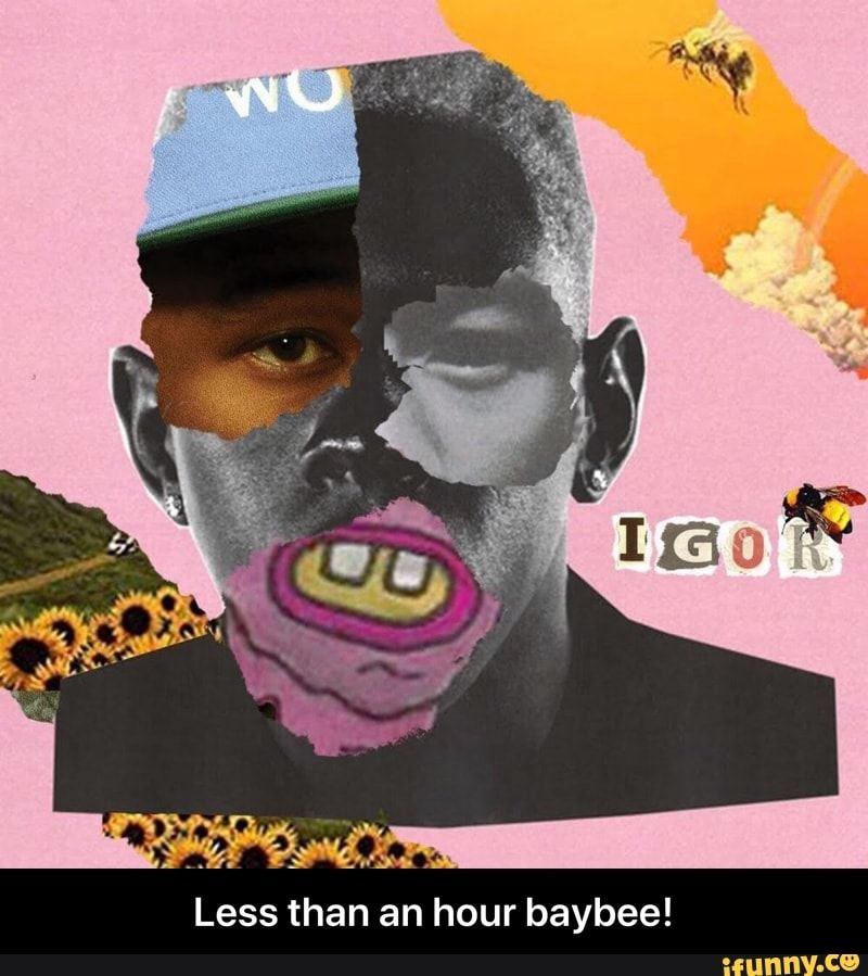 Less Than An Hour Baybee Less Than An Hour Baybee Ifunny Tyler The Creator Wallpaper Tyler The Creator Album Cover Art