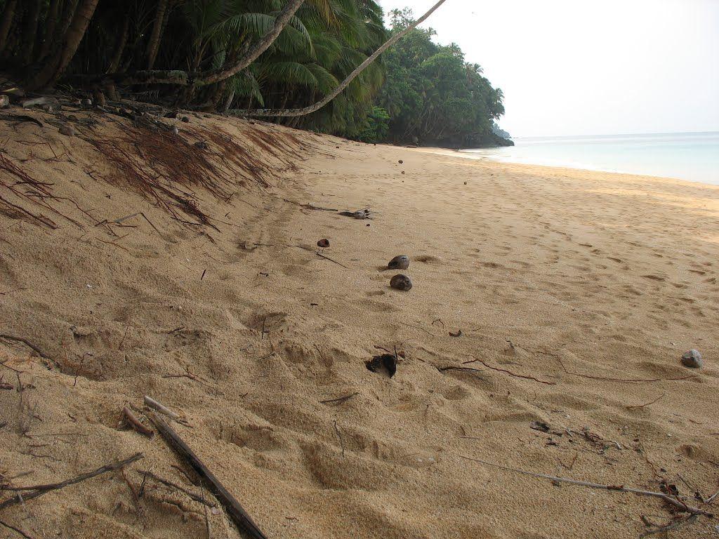Praia Boi