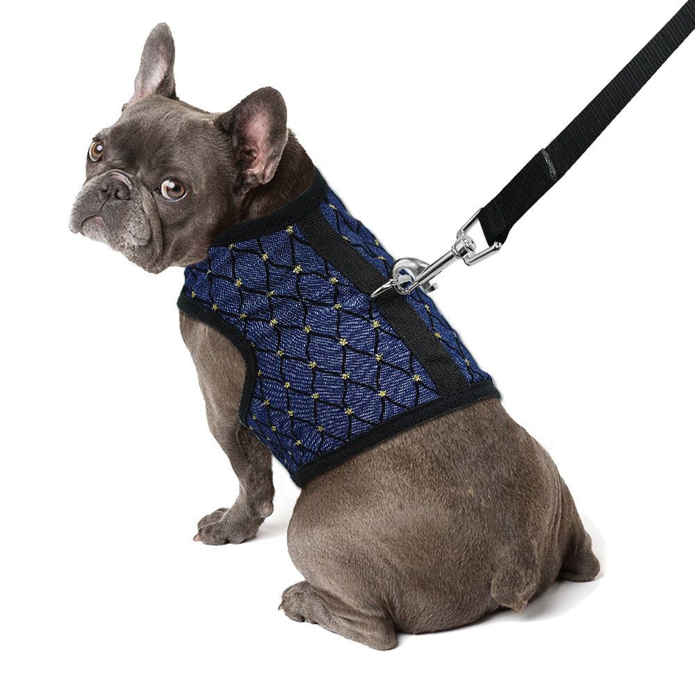 Small Dog Harness And Leash Mesh Padded Pet Puppy Vest For Yorkie
