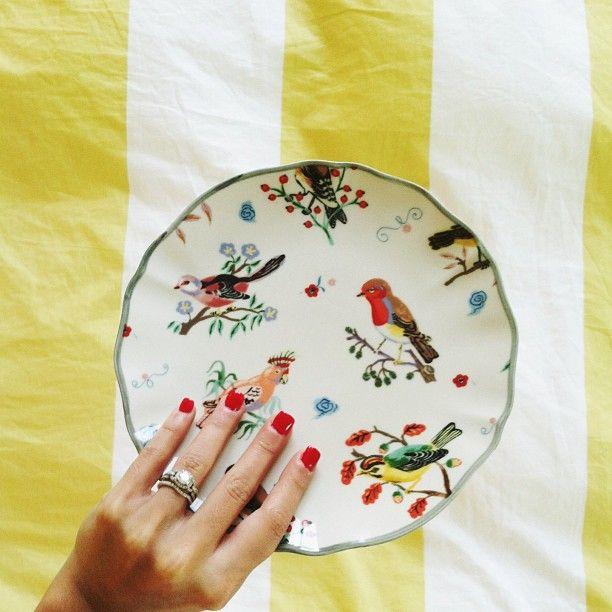 Anthropologie bird plates   @kaylynweir on Instagram