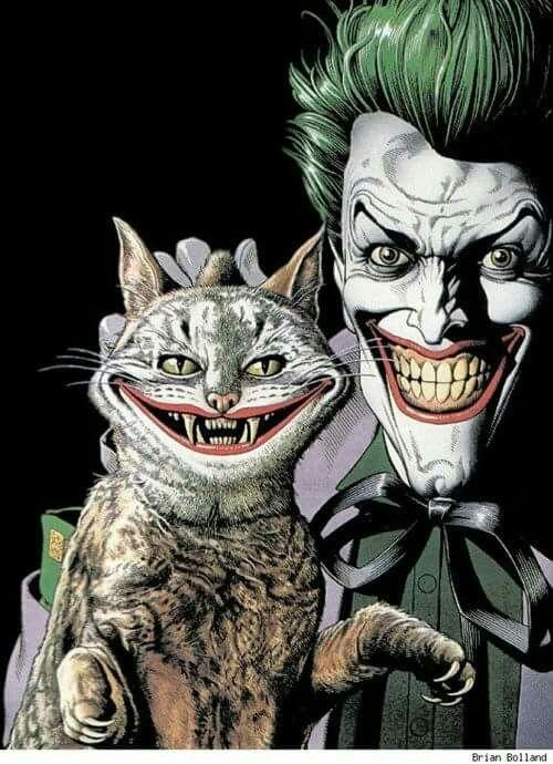 Muchas felicidades Joker!! 1f41e24971c800a73158d60657f18cf8