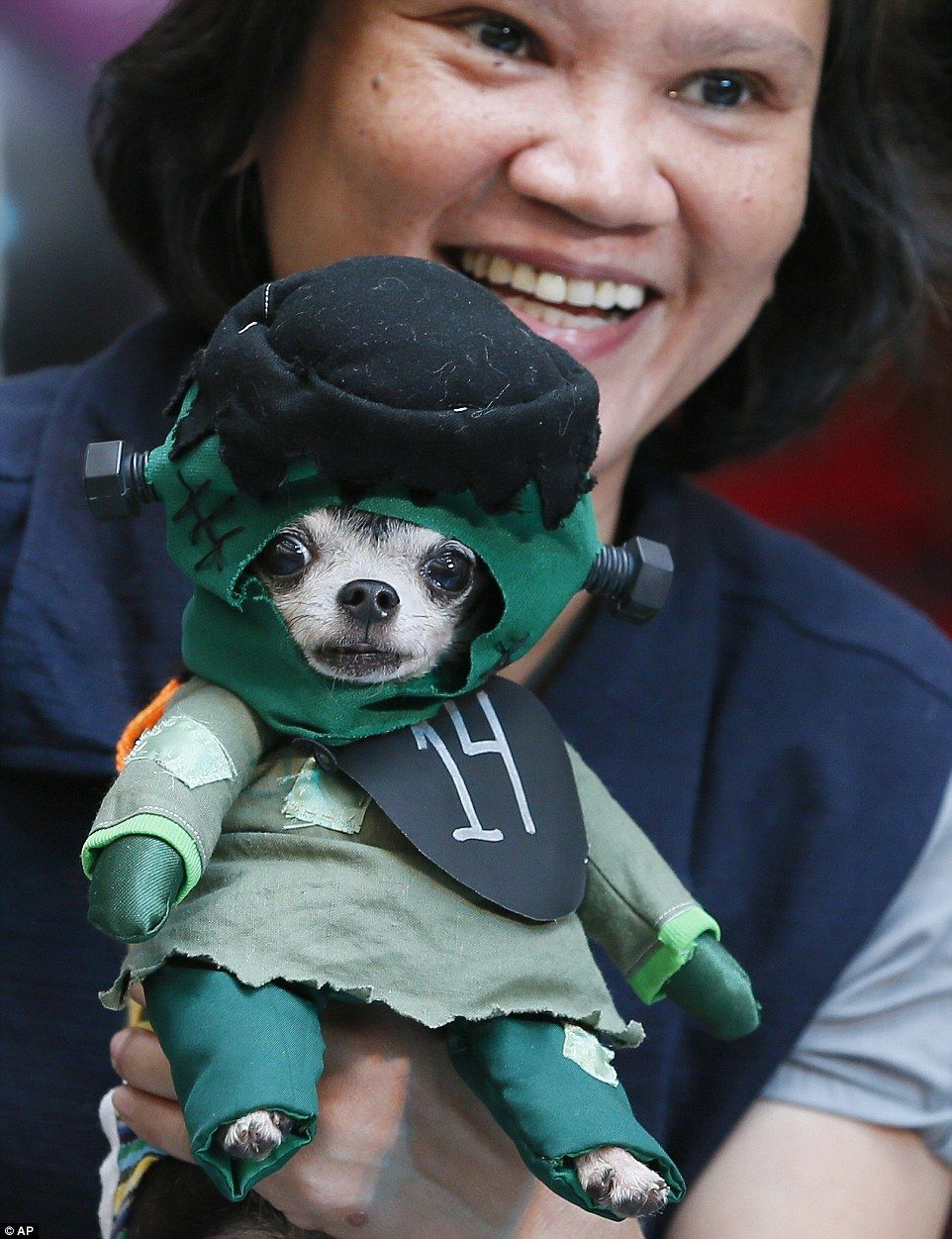 Dogs Dressed Up For Halloween Fashion Show In The Philippines