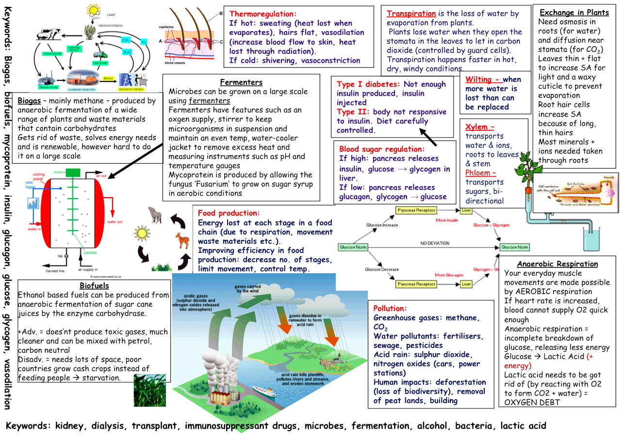 Lovely Revision Posters That Learners Can Fill In For Aqa