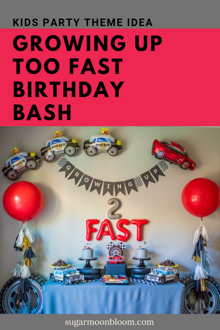 How to Blend Two Birthday Party Themes: A Race Car and Police Party — Sugar Moon Bloom
