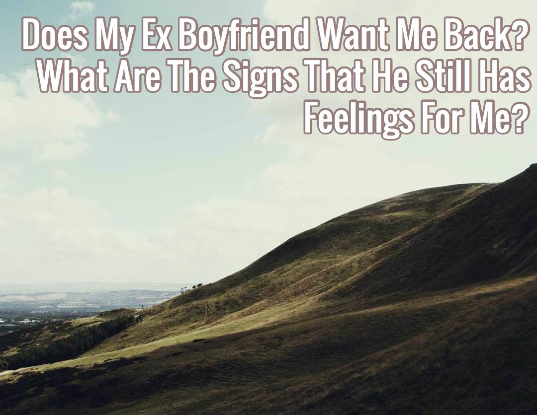 Does my ex boyfriend want me back signs